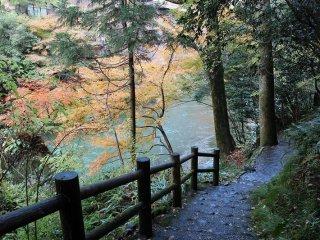 こおろぎ橋側から鶴仙渓遊歩道へと降りる