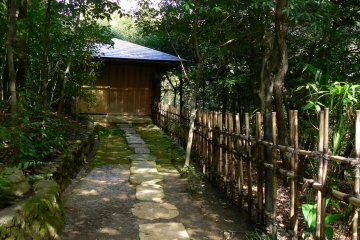 <p>Stepping stones and a rustic bamboo fence</p>