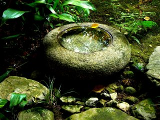Water in a stone basin