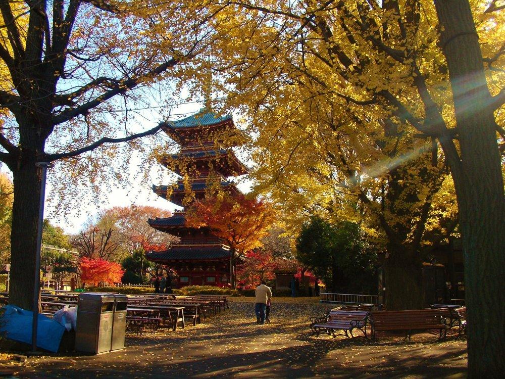 Une pagode sous les couleurs d'automne