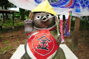 Smiling Raccoon Dogs
