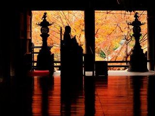 """この寺院で私の一番のお気に入りの場所""""床紅葉""""撮影時、たいてい順番待ちだ"""