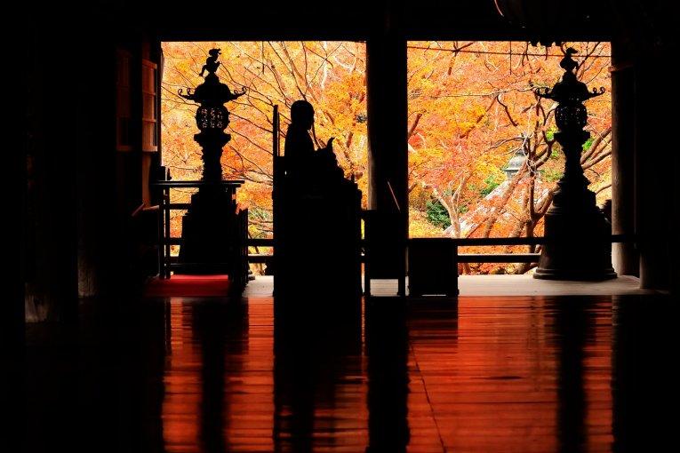 花の寺の床紅葉