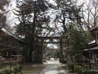 神社側から鳥居を臨む