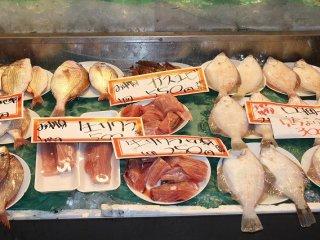 日本海の新鮮で美味しい魚介類がたくさん並べられている