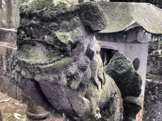 Statues of komainu, or lion-dogs, stand guard at many shrines throughout Japan.