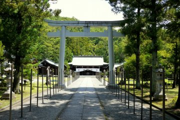 <p>The numerous small posts are not usually there, but the shrine was preparing for a festival</p>