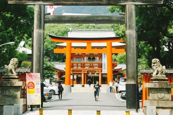 Pintu masuk kuil Ikuta dari jalan raya. Terlihat sebuah pintu/torii dari kayu, melewati jalan masuk/sando Anda akan bertemu lagi dengan torii berwarna merah.