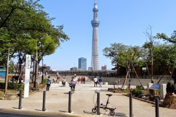 <p>In front of Sumida Park my little bike and the Sky Tree Tower as a background; you also can see the many happy bikers in the pictures.</p>