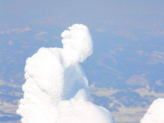 更に上に登ると、大理石の彫刻みたいな木を発見!