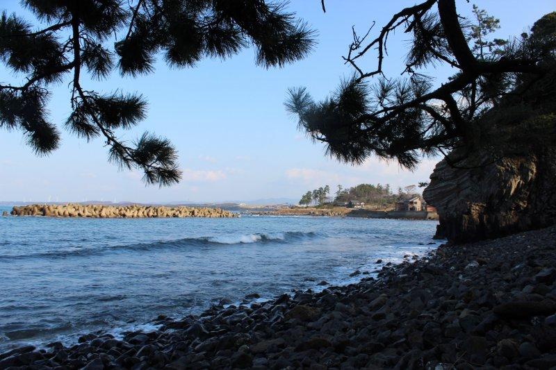 에치젠 마쓰시마 암초 북쪽에는 모래사장이 길게 뻗어 있다. 하마치라는 지명이다