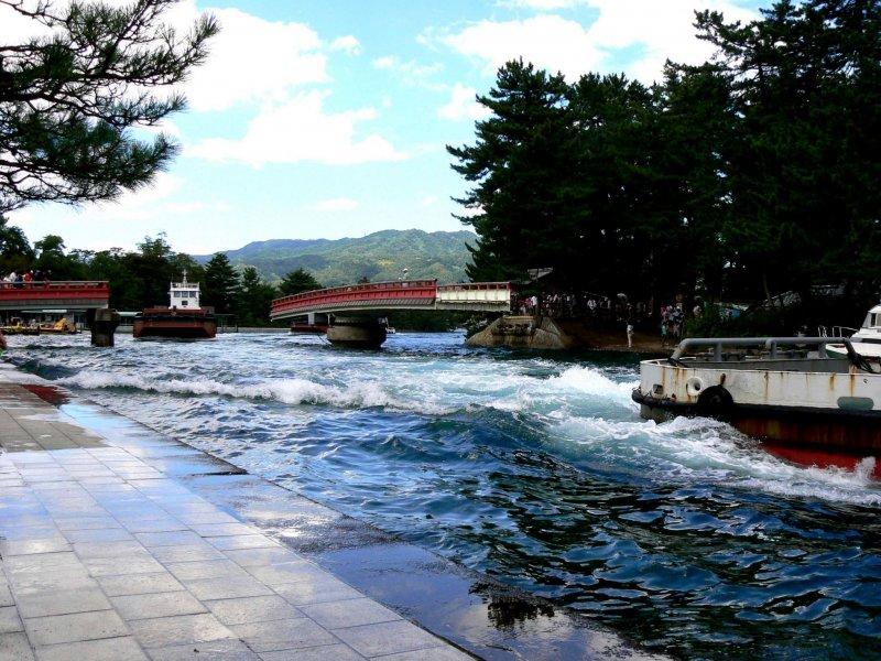 <p>The revolving bridge at Amanohashidate</p>