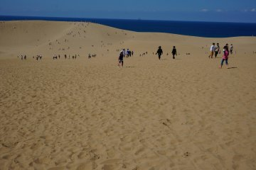 <p>เนินทราย tottori แรกเห็นก่อนเดินก็อดคิดไม่ได้นะว่ามีแค่นี้เหรอ</p>