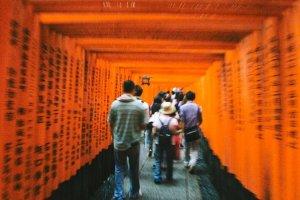 Para pengunjung yang bergerombol melewati ribuan torii. Di antara torii tersebut dituliskan juga doa-doa dengan bahasa Jepang.