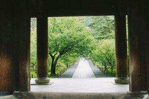Tiang-tiang megah dari Gerbang Sanmon, terlihat sando di depan layaknya karpet yang sedang digelar.