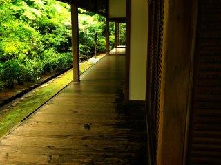 方丈北側の廊下 磨き抜かれた板の間が艶っぽく光る