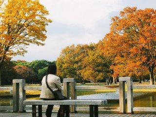 Seorang pengunjung yang sedang berkontemplasi sambil melihat pemandangan taman yang indah