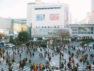 Giao lộ Shibuya vào buổi chiều chủ nhật.