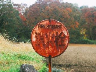 'Fire Hydrant' di tepian jalan