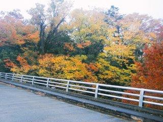 Jembatan di dekat Kuil Shimabuji dengan dedaunan yang berwarna-warni