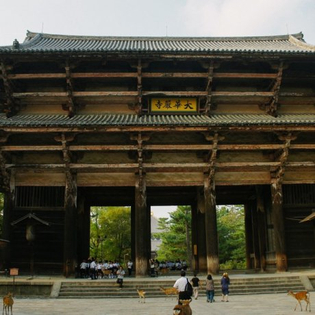 Megahnya Kuil Terbesar di Jepang