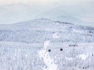 Esquiar é divertido, mesmo com monstros