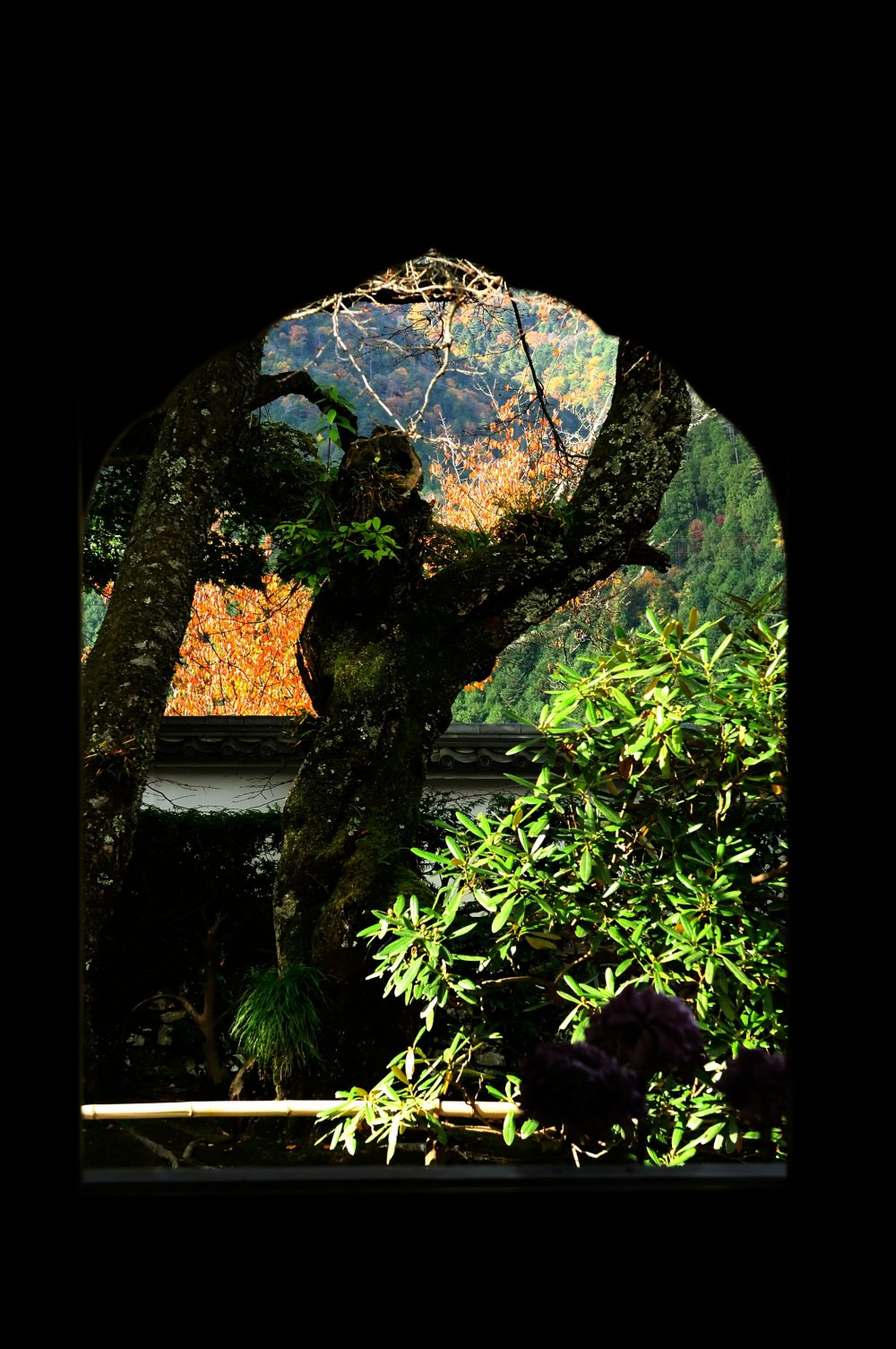客殿、居室の飾り窓 必ずこの窓から外をのぞく