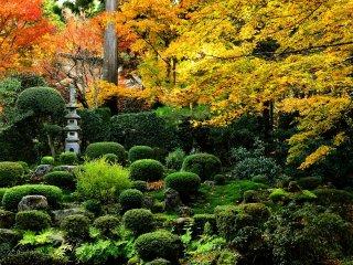 聚碧園(しゅうへきえん) 黄色と翠のバランスが何とも云えない