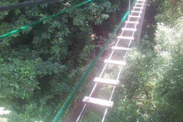 مغامرة في الغابة، يوزاوا-ناكازاتو