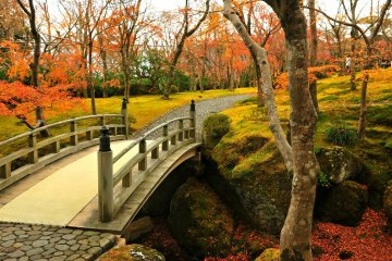 Autumn at Hakone Museum of Art - 1