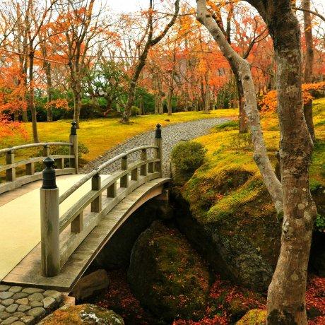Autumn at Hakone Museum of Art - 1