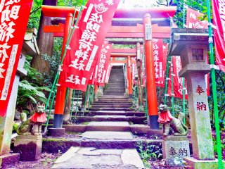 Over half way up you will see the first of many 'Inari' (white foxes) located around this shrine