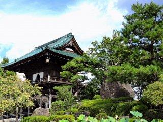 日本庭園越しに眺める山門