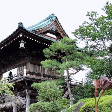 후쿠이 쇼겐지(聖玄寺)의 아름다운 일본 정원