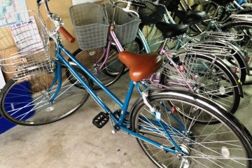 <p>The bicycles are only of one type, but the seats are adjustable for riders of different sizes.</p>