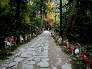 Những bức tượng Ojizo nhỏ xếp hàng hai bên lối đi