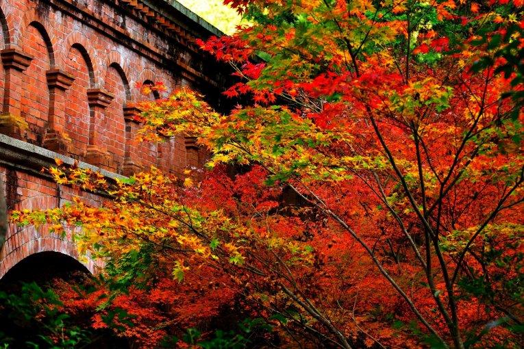 Miyabi: Vẻ đẹp huyền ảo của chùa Nanzen