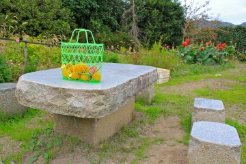 <p>Enjoy your personal&nbsp;harvest&nbsp;at this small picnic table, nestled within the grounds of the mikan orchard entrance.</p>