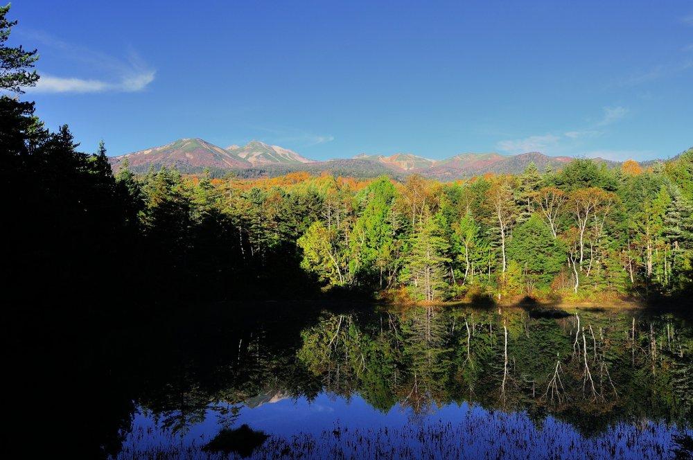 休暇村乗鞍高原から徒歩3分ほどに位置する牛留池