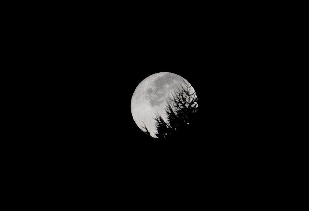 休暇村乗鞍高原前の駐車場に夜明け前の4時に到着