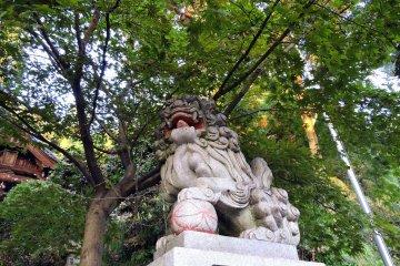 야생 나무 밑에 있는 수호견