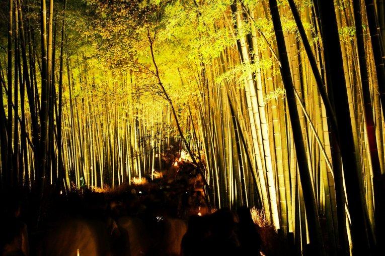 Phố đèn lồng Kyoto Arashiyama