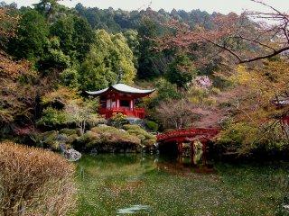 Petals on the pond beside Benten-do