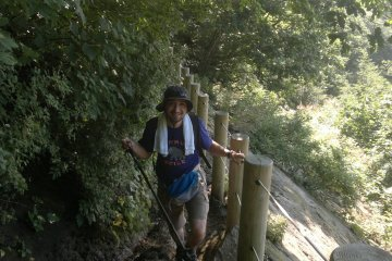 <p>The lower part of the trail is in thick forest.</p>
