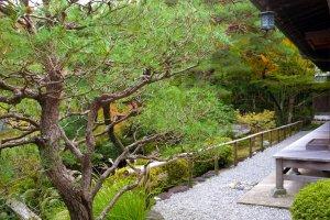 A corner near the teahouse