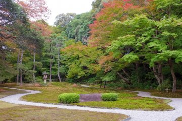 <p>The Moss Garden</p>