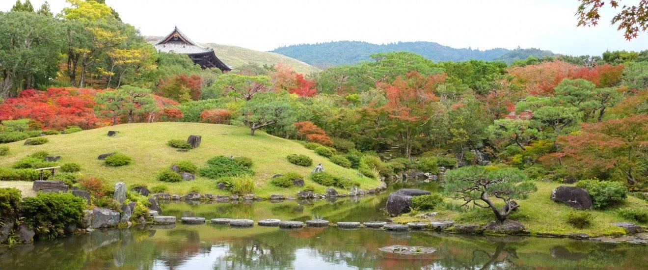 10 amazing things to do in Nara, Japan | Nara, Amazing things and ...