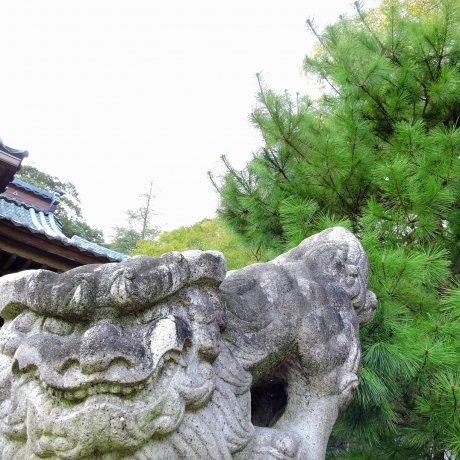 Yanagino Yashiro Shrine in Ono City