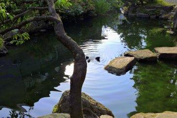 기도실로 가는 길을 따라 조용한 연못