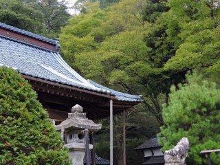 Phòng cầu nguyện và cây cối trong một khu rừng